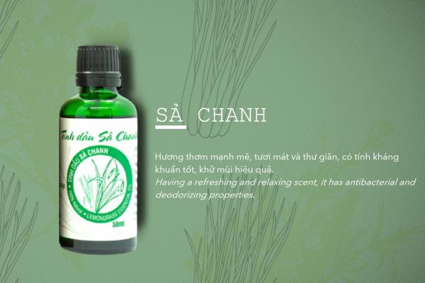 Tinh dầu sả là gì? Công dụng của tinh dầu sả chanh | Tinh Dầu Đất Việt