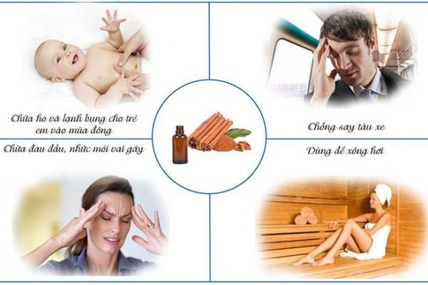 Công dụng và cách sử dụng của tinh dầu quế nguyên chất