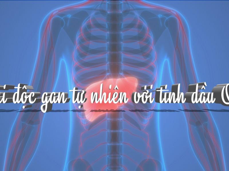 Tinh dầu quế giải độc cơ thể
