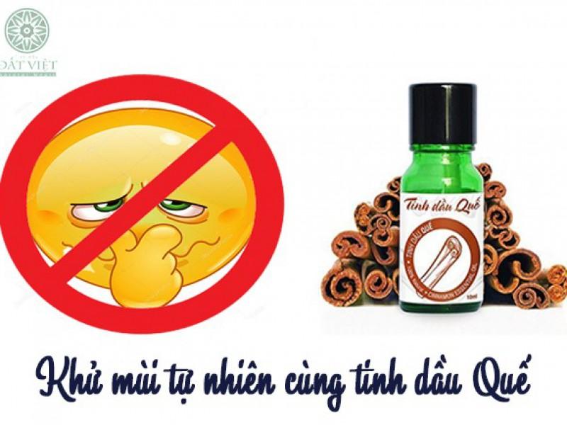 Khử mùi tự nhiên bằng tinh dầu quế
