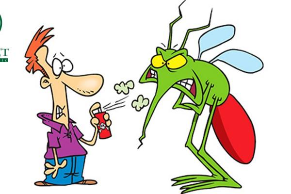 Đây là cách trị ngứa khi bị muỗi đốt an toàn bằng nguyên liệu có sẵn trong bếp