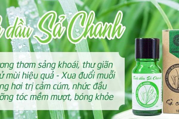 5 Công dụng tuyệt vời của tinh dầu sả chanh