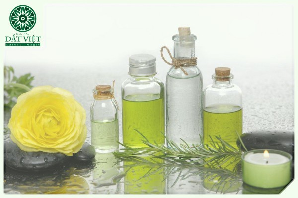 Bạn có biết sự khác biệt giữa tinh dầu dưỡng thể, tinh dầu và tinh chất hoa?