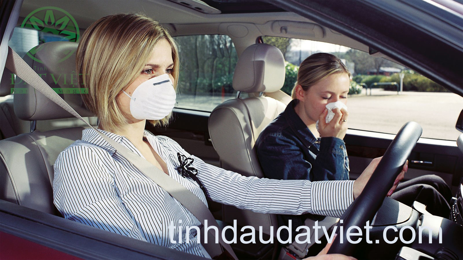 Mùi hôi của ô tô