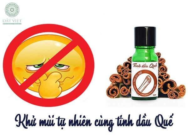 Khử mùi tự nhiên với tinh dầu quế