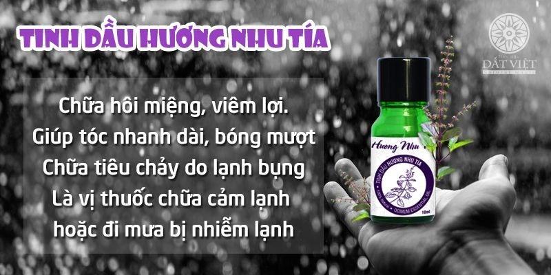 Tác dụng của tinh dầu hương nhu tía