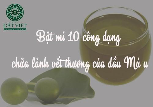 Tác dụng của dầu mù u chữa lành vết thương