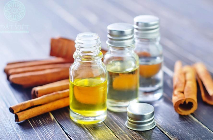 Cách làm tinh dầu quế