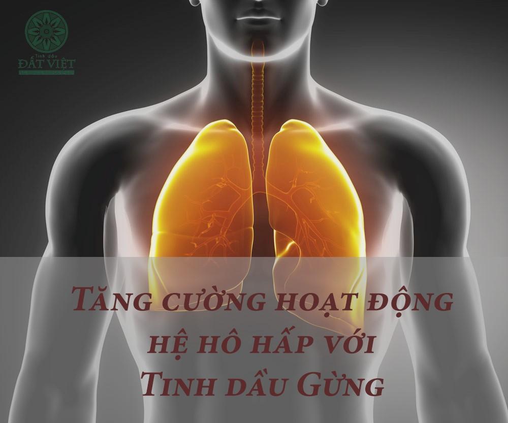Tinh dầu Gừng hỗ trợ hệ hô hấp