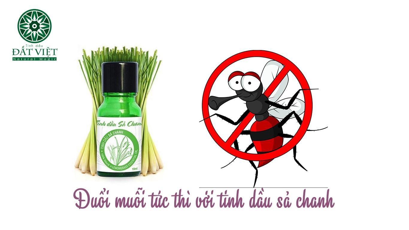 Cách làm tinh dầu sả đuổi muỗi tại nhà