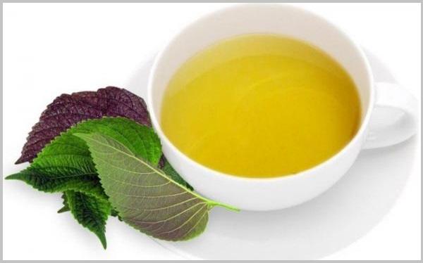 Xông hơi với lá tía tô giúp ngăn ngừa vi khuẩn, thải độc tố trong da