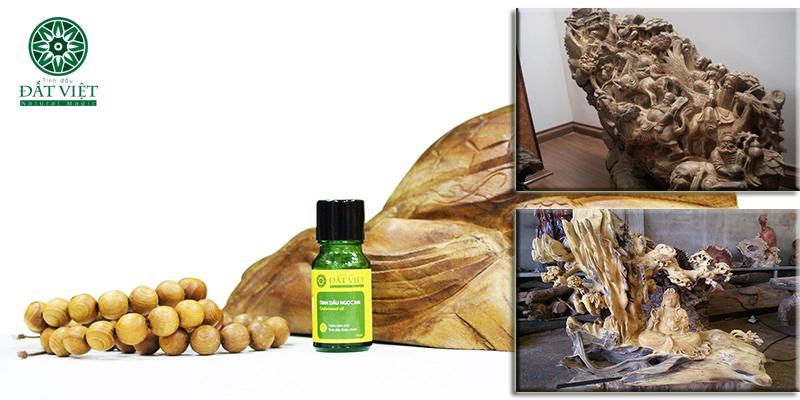 Tinh dầu gỗ ngọc am