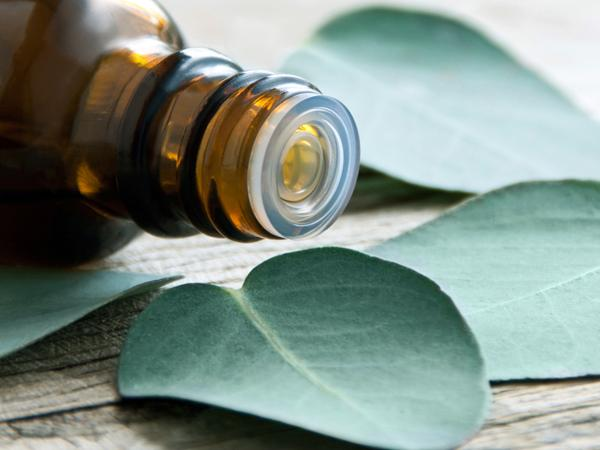 Tinh dầu nguyên chất có mùi hương rất dễ chịu