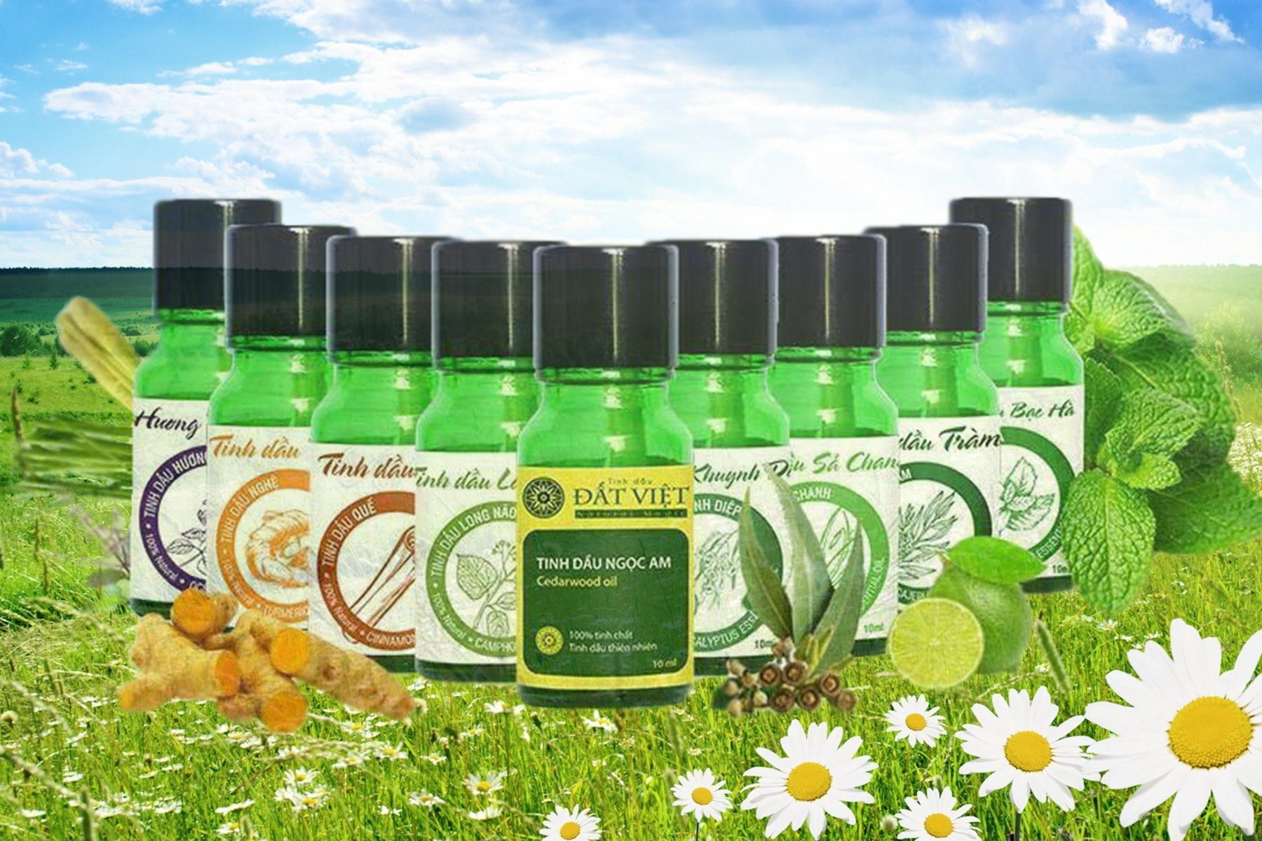 Tinh dầu thơm phòng - Tinh dầu thiên nhiên nguyên chất