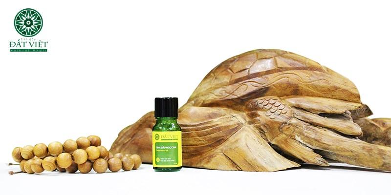 Tinh dầu Ngọc am nguyên chất đất việt