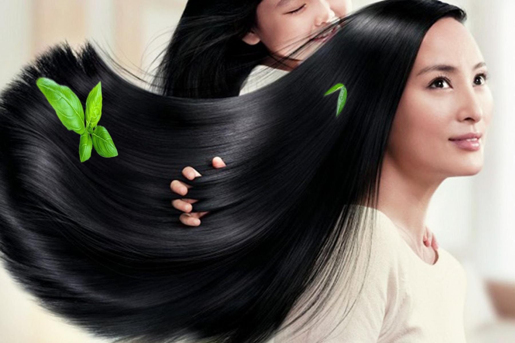 Dưỡng tóc bằng tinh dầu bưởi nguyên chất giúp tóc mượt hơn